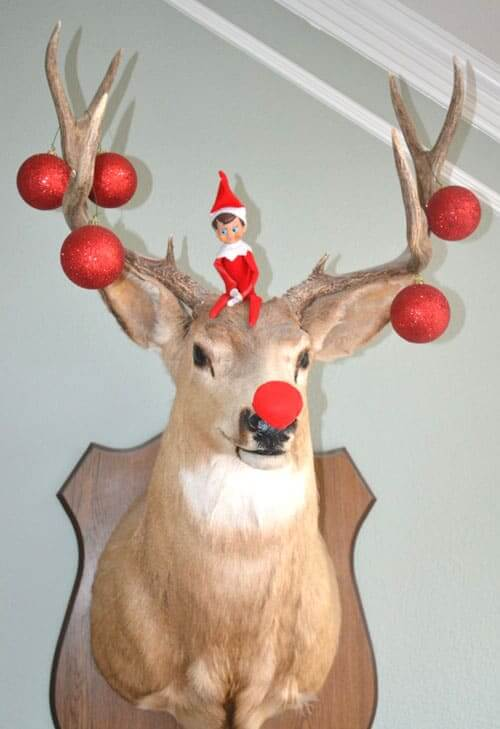 Elf on a shelf stag night