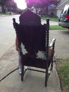 back of cow hide chair