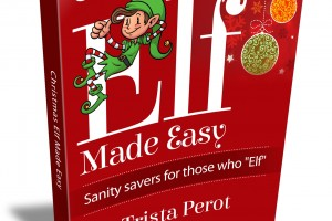 Christmas_Elf_Made_Easy_3D_