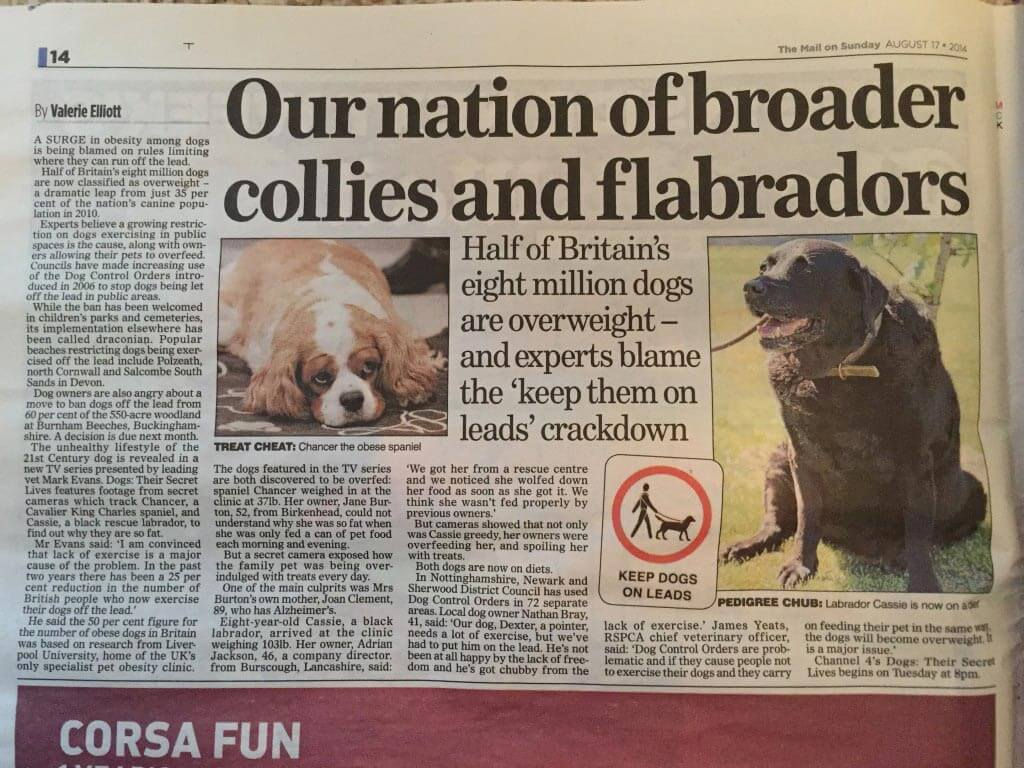 UK newspaper on fat dogs