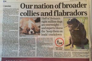 "Portly pugs have 28 days to lose ""the bass"" 