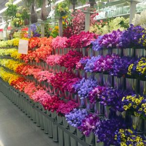 color blocked flowers at new Frisco Michaels