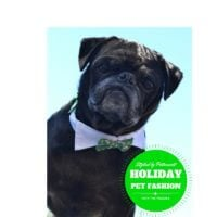 Pet Holiday Fashions from PetSmart