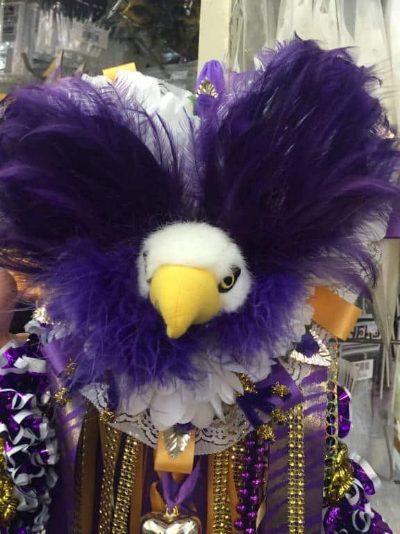 purple eagle texas mum close up - Shopping for Texas Mum Supplies