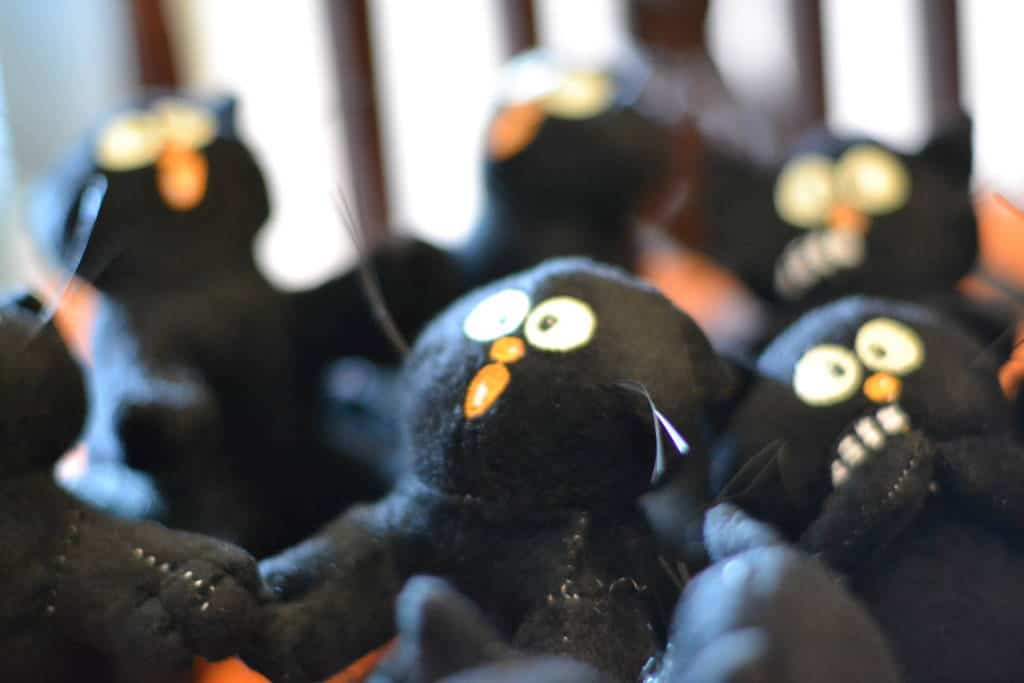 black cat party favors from Oriental Trading halloween