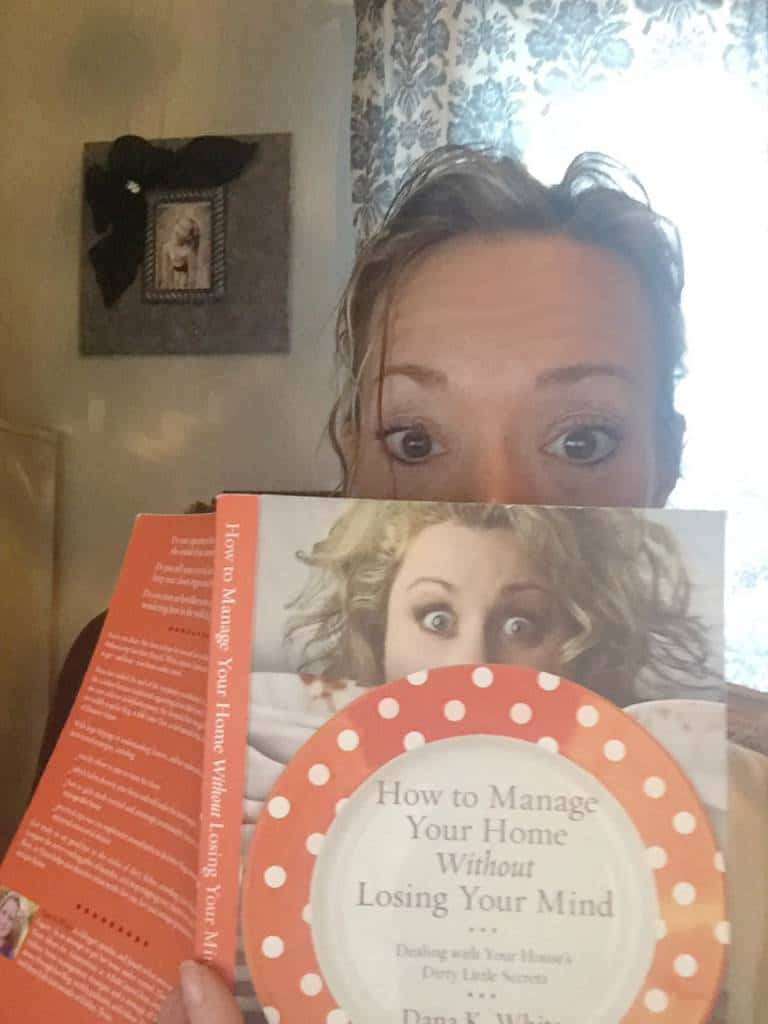 book review how to manage your home without losing your mind