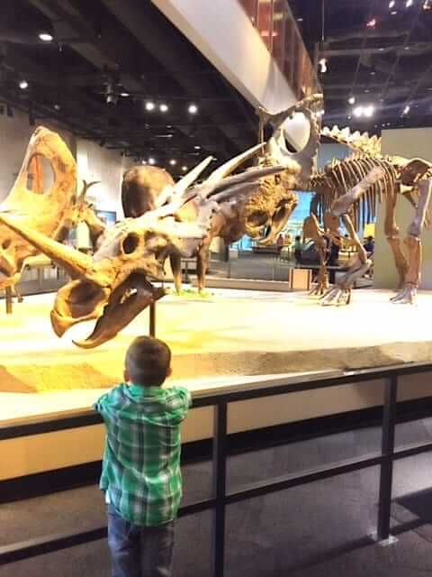 Perot Museum has holiday family fun for you!