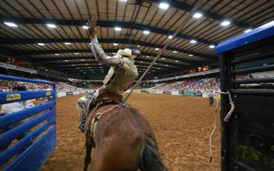A Visit to the Mesquite Championship Rodeo