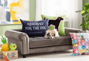 "Crazy stylish pet furniture that's ""Just What I Need!"""