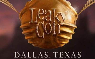 Leaky Con: Ten tips for your first visit
