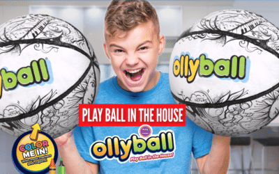 Ollyball Review